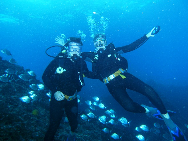 diving in aliwal shoal